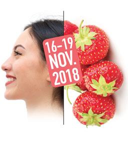 Visuel VIVEZ NATURE Lyon - Novembre 2018